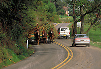 Mule team pulling farm cart on busy country road. Strasburg Pennsylvania USA Lancaster County.