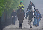 May 15, 2014: Kid Cruz comes back from the track with trainer Linda Rice, far left, during morning preparations for the Preakness Stakes at Pimlico Race Course in Baltimore, MD. Scott Serio/ESW/CSM