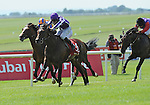 Treasure Beach (no. 8), ridden by C. O'Donoghue and trained by Aiden O'Brien, defeats favorite Carlton House and wins the group 1 Irish Derby for three year olds on June 26, 2011 at the Curragh Racecourse in Newbridge, Kildare, Ireland.  (Bob Mayberger/Eclipse Sportswire)