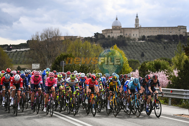 The peloton during Stage 5 of Tirreno-Adriatico Eolo 2021, running 205km from Castellalto to Castelfidardo, Italy. 14th March 2021. <br /> Photo: LaPresse/Marco Alpozzi | Cyclefile<br /> <br /> All photos usage must carry mandatory copyright credit (© Cyclefile | LaPresse/Marco Alpozzi)