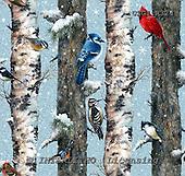 GIORDANO, GIFT WRAPS, GESCHENKPAPIER, PAPEL DE REGALO, Christmas Santa, Snowman, Weihnachtsmänner, Schneemänner, Papá Noel, muñecos de nieve, paintings+++++,USGIR324,#GP#,#X# napkins napkins