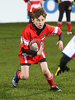 MINI RUGBY | Saturday 6th December 2014<br /> <br /> Mini-Rugby during halftime at the Ulster vs Scarlets  ERCC clash at the Kingspan Stadium, Ravenhill Park, Belfast.  Picture credit: John Dickson / DICKSONDIGITAL