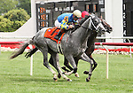 8 August 2009: TAKE THE POINTS with jockey Kent Desormeaux duels with BLACK BEAR ISLAND iand jockey John Patrick Murtagh in the stretch during the 33rd running of the G1 Secretariat Stakes at Arlington Park in Arlington Heights, Illinois.
