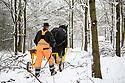 2021_02_09_Horse_Logging_in_Snow