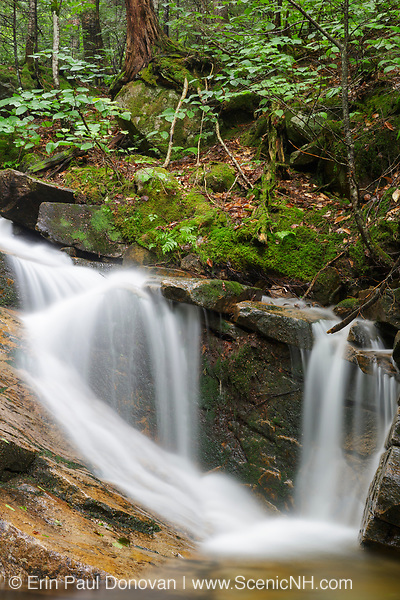 Cascade on Louisville Brook along the Attitash Trail in Bartlett, New Hampshire USA during the summer months.