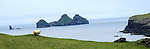 Vestmannaeyjar (Westman Islands) is a town and archipelago off the south coast of Iceland.<br /> <br /> The largest island, Heimaey, has a population of more than 4,000. The other islands are uninhabited, although six have single hunting cabins. Vestmannaeyjar came to international attention in 1973 with the eruption of Eldfell volcano, which destroyed many buildings and forced a months-long evacuation of the entire population to mainland Iceland. Approximately one fifth of the town was destroyed before the lava flow was halted by application of 6.8 billion litres of cold sea water.<br /> Photo by Deirdre Hamill/Quest Imagery