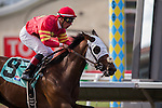 JUL 25,2014:Eddie Could Go,ridden by Julien Couton,wins the maiden race,4R at Del Mar in Del Mar,CA. Kazushi Ishida/ESW/CSM