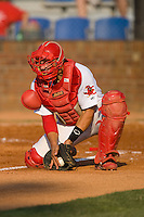 Catcher Travis Tartamella #36 of the Johnson City Cardinals fields a throw at home plate against the Elizabethton Twins at Howard Johnson Field July 3, 2010, in Johnson City, Tennessee.  Photo by Brian Westerholt / Four Seam Images