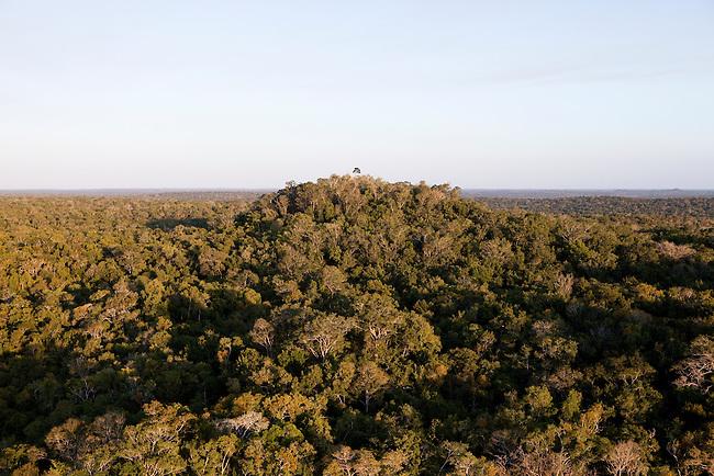 """Overflight over Mayan Biosphere Reserve, View on pyramid """"La Danta"""" at """"El Mirador"""" complex."""