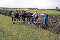 Men using horse-drawn plow to demonstrate 1900's era farming techniques at Living History Farms, near Des Moins Iowa, AGPix_0505.