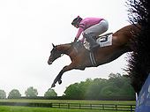 3rd Queen's Cup Novice Stakes - Brianbakescookies