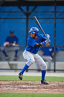 Toronto Blue Jays center fielder Steward Berroa (14) at bat during an Instructional League game against the Pittsburgh Pirates on October 14, 2017 at the Englebert Complex in Dunedin, Florida.  (Mike Janes/Four Seam Images)