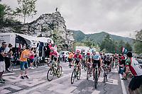 grupetto up the final climb to Pratonevoso<br /> <br /> stage 18: Abbiategrasso - Pratonevoso (196km)<br /> 101th Giro d'Italia 2018