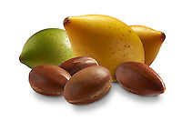 Fresh Argan Fruits and Argan nuts against a white background. (Argania spinosa L)