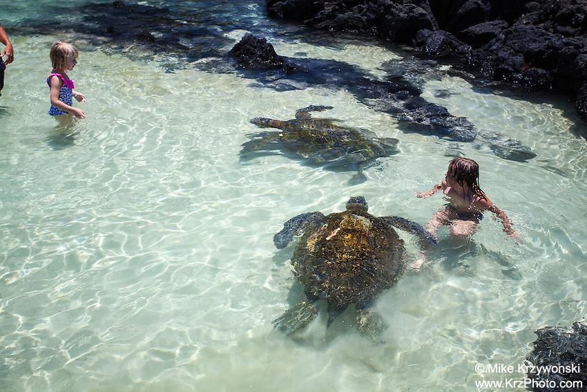 Children swimming w/ turtles at Richardson Beach Park, Hilo, Big Island, Hawaii