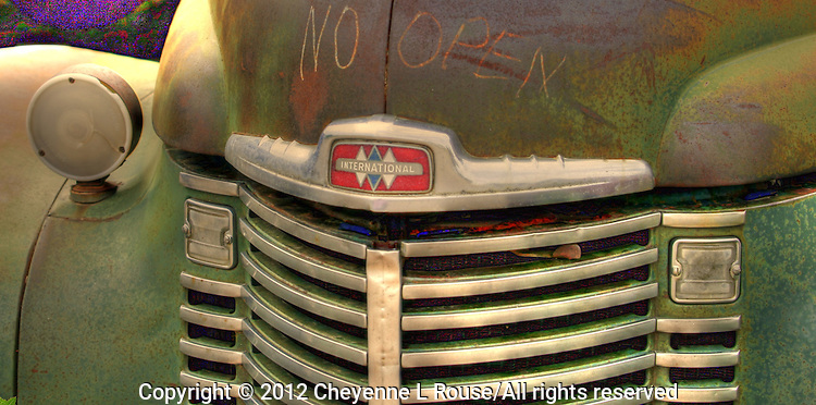 Hood and Grill on Green International Truck - New Mexico