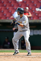 Burlington Bees shortstop Erick Salcedo (14) squares to bunt during a game against the Kane County Cougars on August 20, 2014 at Third Bank Ballpark in Geneva, Illinois.  Kane County defeated Burlington 7-3.  (Mike Janes/Four Seam Images)