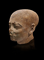Ancient Egyptian statue shaved head of a priest, New Kingdom, 18th Dynasty, (1390-1353 BC). Egyptian Museum, Turin. Drovetti collection. Cat 3141. black background.