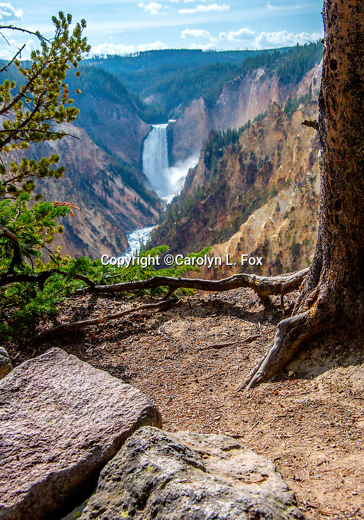 The Grand Canyon of the Yellowstone is a popular tourist spot in Yellowstone.