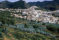 Moulay Idris, burial place of Idris I, founder of the first Arab-Muslim dynasty in Morocco.  His tomb is under the green-tiled roof to the right of the minaret in the distance on the right.