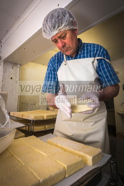 France, Calvados (14), Pays d' Auge, Saint-Philbert-des-Champs,  Fabrication du Pont-l'évêque AOP , chez Françoise et Jerôme Spruytte , salage du fromage // France, Calvados, Pays d' Auge, Saint Philbert des Champs, Pont l'Évêque cheese making , Françoise et Jerôme Spruytte, Pont l'Évêque cheese producers, salting cheese [Autorisation : 2014-119]