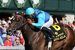 April 12, 2015: Miss Ella and jockey Rajiv Maragh win the 30th running of the Adena Springs Beaumont Grade 2 $250,000 at Keeneland Race Course for owner Jack Swain and trainer Graham Motion .   Candice Chavez/ESW/CSM
