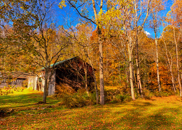 Late fall colors blaze around the barn that stands near the parking area at Abingdon Vineyard and Winery (HDR image).