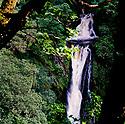 Devil's Bridge Waterfalls Wales  CREDIT Geraint Lewis
