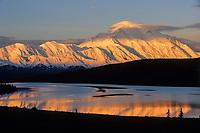 Golden Sun Shines On Mt. Denali Reflected In Wonder Lake In Denali National Park, Alaska.