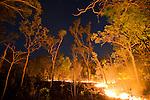 Bush fire, Arnhem Land, Northern Territory
