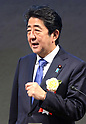 Prime Minister Shinzo Abe delivers a speech at the meeting of councillors of Keidanren