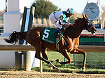 LOUISVILLE, KY -NOV 23: Blue Prize (James Graham), wins the G2 Falls City Handicap at Churchill Downs, Louisville, Kentucky. Owner Merriebelle Stable LLC, trainer Ignacio Correas IV. By Pure Prize x Blues For Sale, by Not For Sale. (Photo by Mary M. Meek/Eclipse Sportswire/Getty Images)