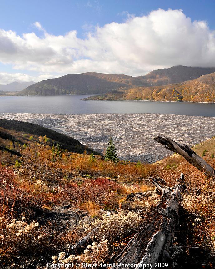 Spirit Lake in Mt St Helens National Volcanic Monument Washington