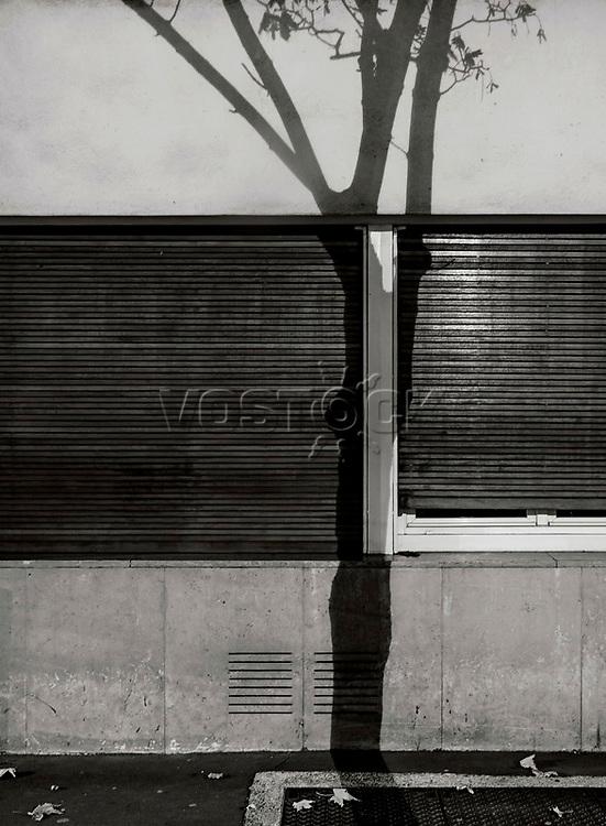 Paris, Tree Shadow, Baumschatten, Baum, 28.11.2013<br /> <br /> <br /> <br /> <br /> ***HIGHRES AUF ANFRAGE*** ***VOE NUR NACH RUECKSPRACHE***<br />  ***Keine Social_Media Nutzung***<br /> <br /> Engl.: Europe, France, Paris, Tree Shadow, shadows, trees, tree, house wall, facade, 28 November 2013<br /> ***HIGHRES ON REQUEST***PUBLICATION ONLY AFTER CONSULTATION WITH LAIF***<br /> ***No social media use***