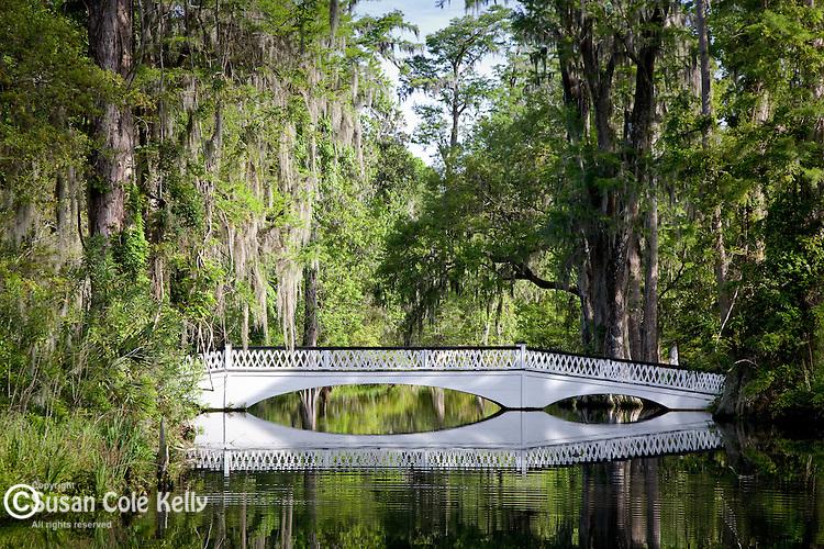 Magnolia Plantation,  Long white bridge over Cypress Lake, Charleston, SC, USA