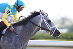 Commandeered with John Velazquez up wins the 8th race at Keeneland Race Course. 04.08.2010