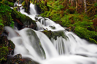 Waterfall in rainforest along Power Creek Road, Cordova, Chugach National Forest, Alaska.