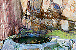 Wishing well in the forested mountainside gardens of Ohme Gardens. Ohme Gardens, Wenatchee, WA.