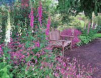 Garden bench. G. Owen Garden. Eugene, Oregon.