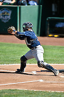 Nathan Rodriguez (17) of the Helena Brewers fields the ball on defense against the Ogden Raptors in Pioneer League action at Lindquist Field on July 16, 2016 in Ogden, Utah. Ogden defeated Helena 5-4.  (Stephen Smith/Four Seam Images)