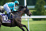 ARLINGTON HEIGHTS,IL-AUGUST 12: Beach Patrol,ridden by Joel Rosario,wins the Arlington Million at Arlington International Race Track on August 12,2016 in Arlington Heights,Illinois (Photo by Kaz Ishida/Eclipse Sportswire/Getty Images)