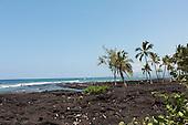 Palms, Lava and the Sea