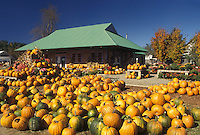 AJ4574, pumpkins, autumn, Vermont, Pumpkins for sale at Settlement Farm Market in the fall in Middlesex in Washington County in the state of Vermont.