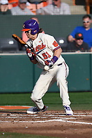 Designated hitter Drew Donathan (51) of the Clemson Tigers is hit by a pitch while attempting a bunt in a game against the Furman Paladins on Tuesday, February 20, 2018, at Doug Kingsmore Stadium in Clemson, South Carolina. Clemson won, 12-4. (Tom Priddy/Four Seam Images)
