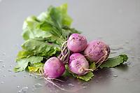 Gastronomie générale / Diététique /Navet Violet Bio // General gastronomy / Diet / Organic Violet Turnip
