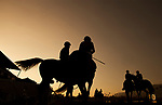 ARCADIA, CA - MARCH 11: Horses walk onto the track for the final race at Santa Anita Handicap at Santa Anita Park on March 11, 2017 in Arcadia, California. (Photo by Alex Evers/Eclipse Sportswire/Getty Images)