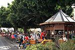 Spain, Canary Islands, La Palma, Los Llanos de Aridane: Calle Real former Calle General Franco), street cafe, old Bay trees