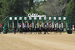 April 11, 2015: Starting gate of the Oaklawn Hanicap at Oaklawn Park in Hot Springs, AR. Justin Manning/ESW/CSM