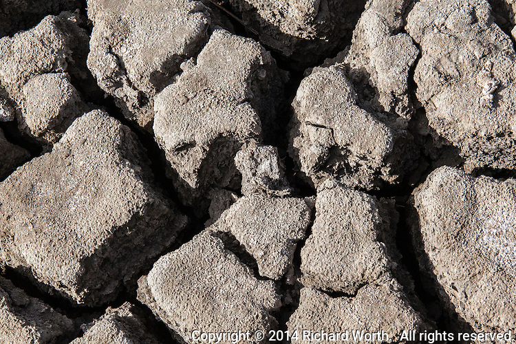 A close-up of the wetland surface, dry and cracked by prolonged drought in California's Bay Area.