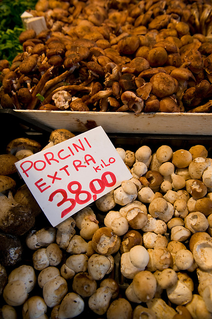 Porcini mushrooms - Ceps - Rialto vegetable market - Venice Italy